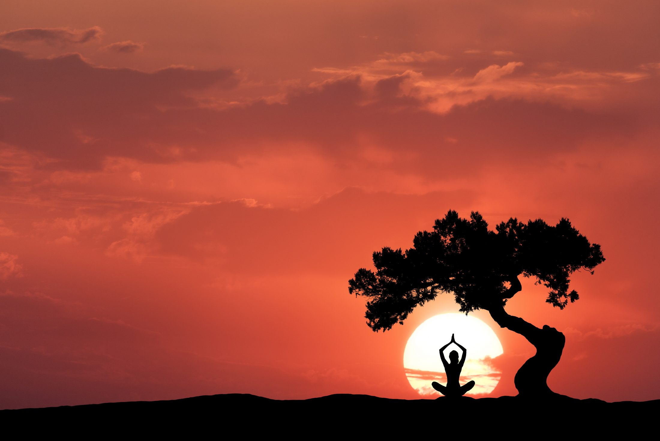 silhouette-of-a-sitting-woman-practicing-yoga-P27V5D4